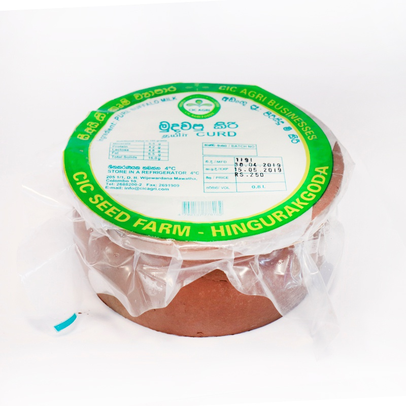 Cic Curd Clay Pot 800G - in Sri Lanka