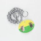 """Seepet Choke Chain (3.0Mmx18"""") - in Sri Lanka"""