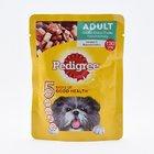 Pedigree Dog Food Chicken & Liver Cis Pouch 80g - in Sri Lanka
