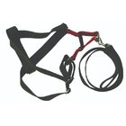 Seepet Dog Harness (25Mm×45/60Cm) - in Sri Lanka