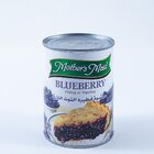 Mother'S Maied Bluberry Pie Filling 595G - in Sri Lanka