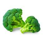 Broccoli - in Sri Lanka