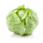 Cabbage - in Sri Lanka