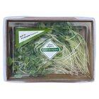 Grow Organic Radish Microgreens 50G - in Sri Lanka