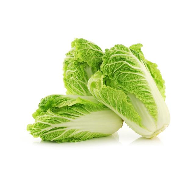 Chinese Cabbage - in Sri Lanka
