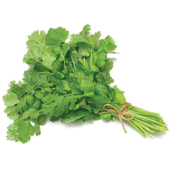 Coriander Leaves - in Sri Lanka
