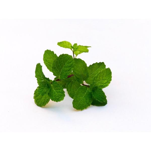 Minchi Leaves - GLOMARK - Vegetable - in Sri Lanka