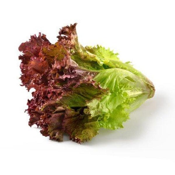 Red Salad Leaves - GLOMARK - Vegetable - in Sri Lanka