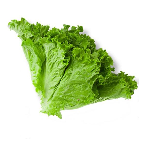 Salad Leaves - GLOMARK - Vegetable - in Sri Lanka