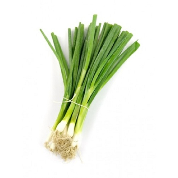 Organic Spring Onion - in Sri Lanka